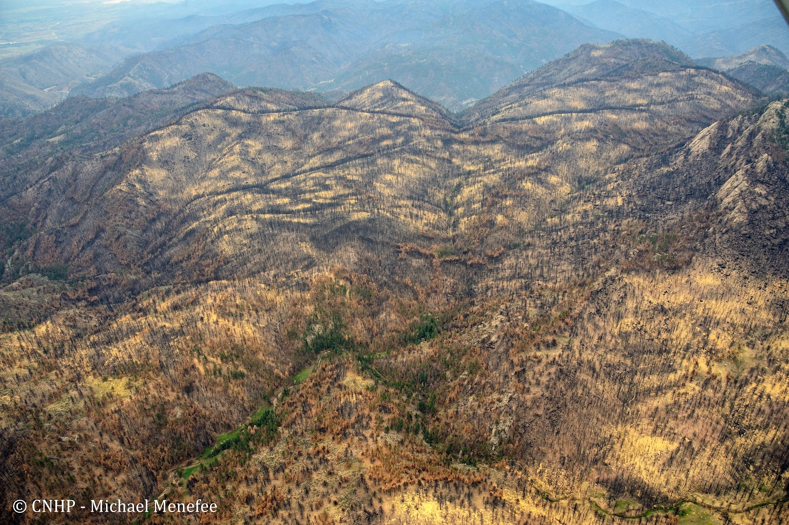 Cnhp Blog Erosion In The High Park Fire Area