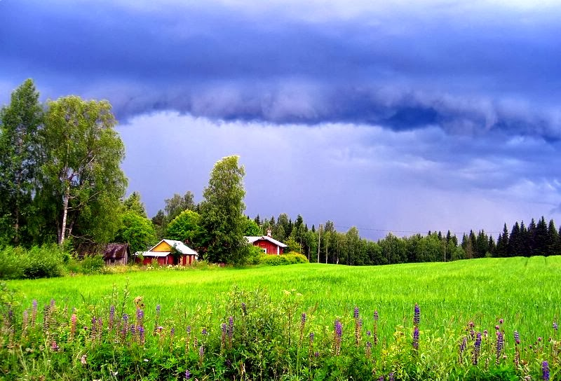 Fall Scenery Hd Wallpaper World Visits Finland Landscape Summer And Winter