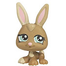 Littlest Pet Shop Petriplets Rabbit (#1332) Pet