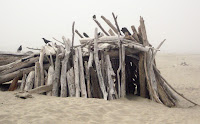 driftwood structure
