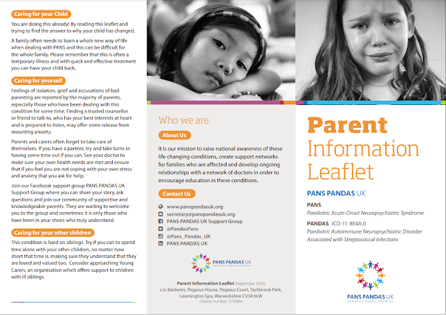 Leaflet with lots of words explaining PANS and pandas - the text can be found at website https://www.panspandasuk.org/