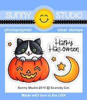 Sunny Studio Scaredy Cat 2x3 Clear Photopolymer Stamps