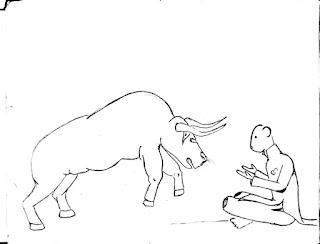 Bull vs Matador #Conjolted