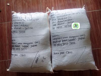 Benih Padi yang dibeli    SUDARSONO Ngawi, Jatim.    (Setelah packing karung).