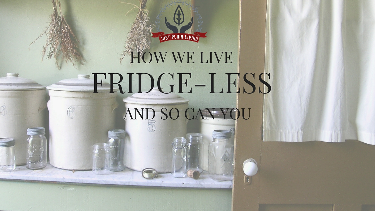 Living without refrigeration - or drastically reducing the cost of keeping your food - is certainly possible. Find out the four main ways we keep food all year without a fridge or freezer.