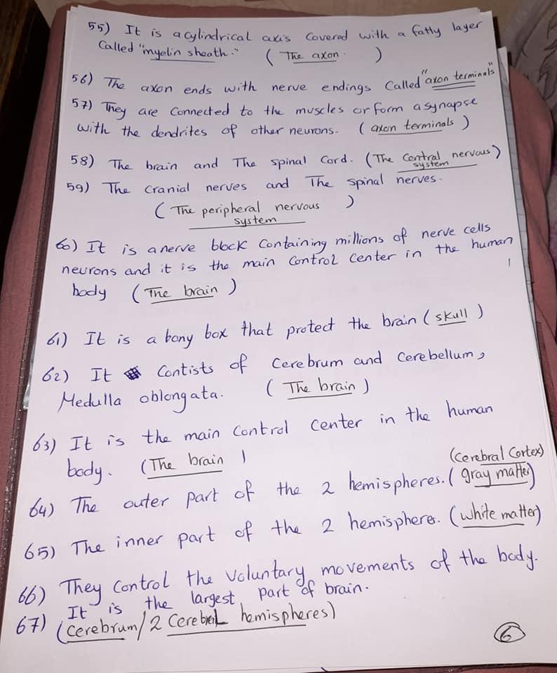 شيت خاص بسؤال write the scientific term علي المنهج كامل grade6_science 6