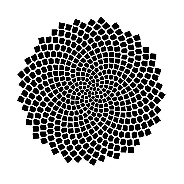 How To Decorate Series Finding Your Decorating Style: Chamario Matemáticas: LA SUCESIÓN DE FIBONACCI EN LA