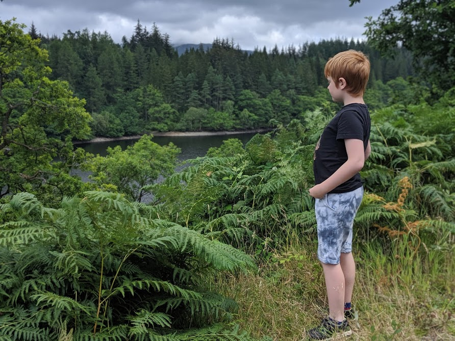 The Three Lochs Forest Drive - A Good Spot for Wild Camping with Kids - the view