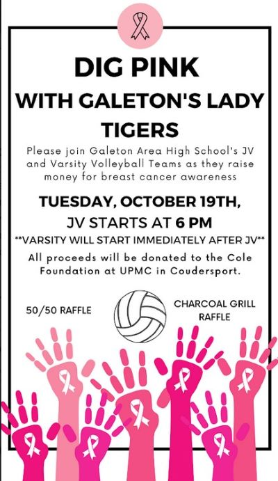 10-19 Dig Pink Volleyball, Galeton