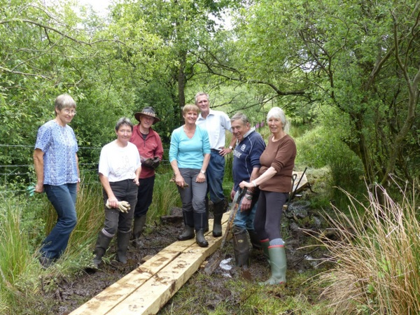 Local volunteers laying boardwalks through Devon  Wildlife Trust's Emsworthy Mire nature reserve, Dartmoor