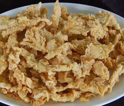 Resep Membuat Telur Dadar Crispy Renyah Sederhana