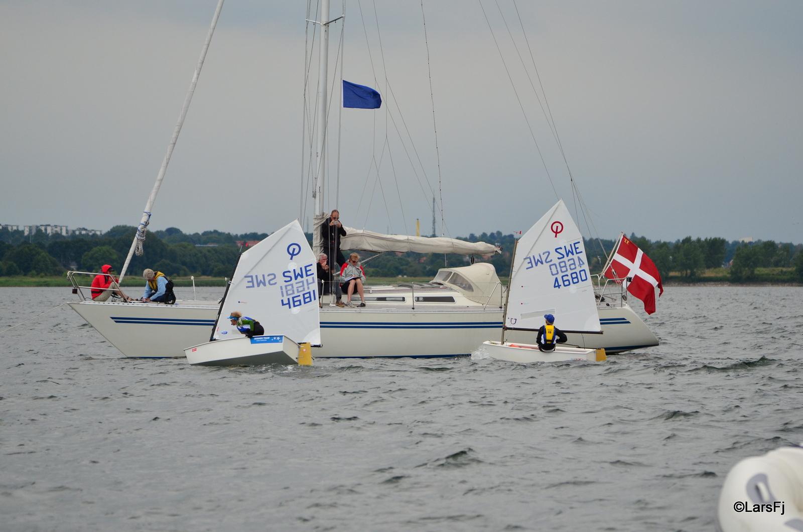 Stenharda seglare