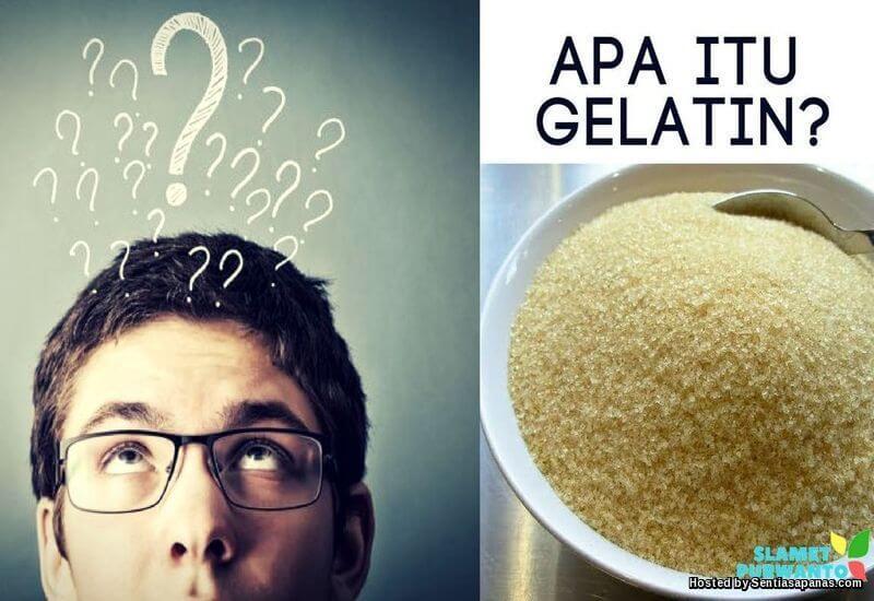 Apa Itu Gelatin