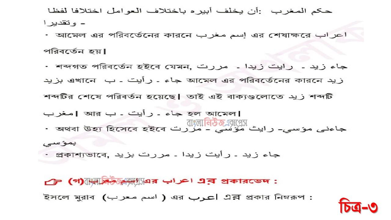 আলিম ২০২২ পরীক্ষার্থীদের ৭ম সপ্তাহের এ্যাসাইনমেন্ট আরবি ২য় পত্র উত্তর https://www.banglanewsexpress.com/