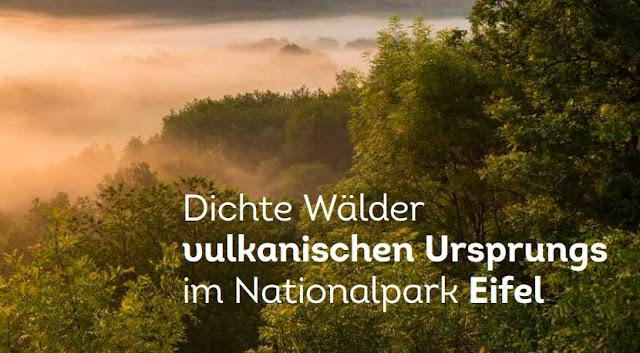 Landal Park Eifel