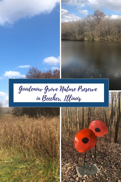 Charmed by a Diversity of Habitats at Goodenow Grove Nature Preserve in Beecher, Illinois