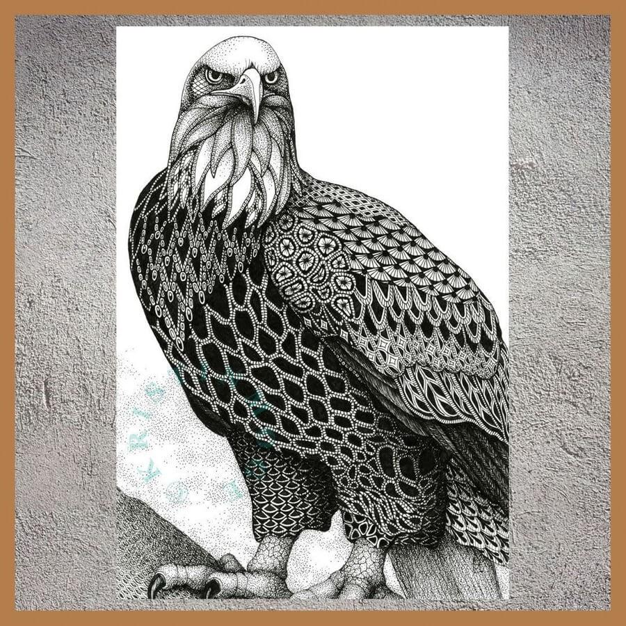07-Bald-eagle-Kristin-Moger-www-designstack-co
