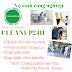 Giới thiệu - Dịch vụ vệ sinh công nghiệp - [km-15%]