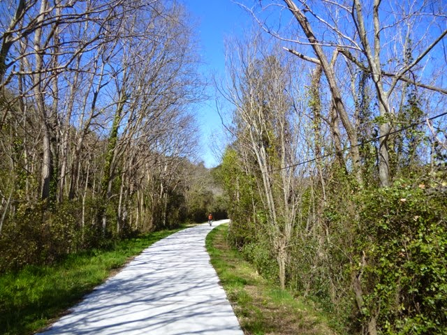 Pirinexus por las vías francesas