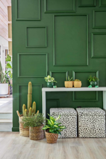 Quick and Simple Home Accent Ideas to Update Your Space
