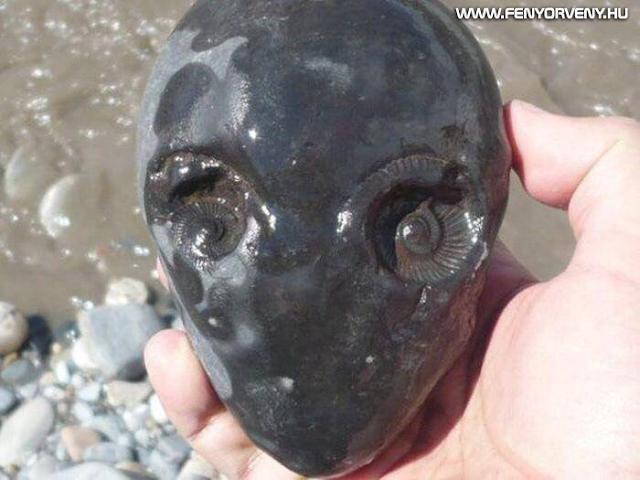 Hasonlóságok: Földönkívüli fejre hasonlító kő