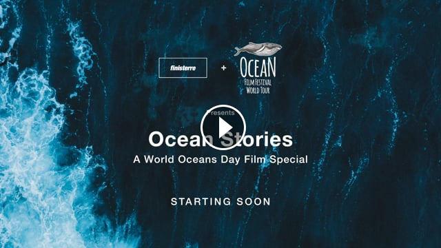 Ocean Stories A World Oceans Day Film Special