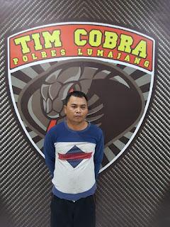 Oknum PNS Ditangkap Tim Cobra Polres Lumajang