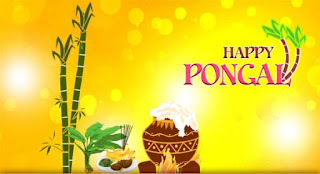 wish you happy pongal greetings dp