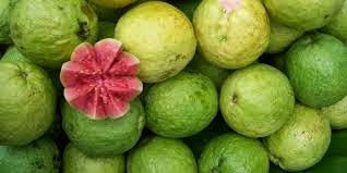detikhealth.net - This fruit is very hard when it is not ripe for Health Benefits of Guava