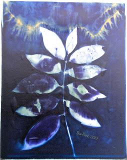 Wet cyanotype -Sue Reno_Image 661