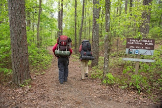 a walk in the woods-nick nolte-robert redford