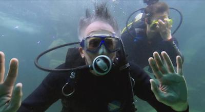 O apresentador no aquário (Divulgação/SBT)