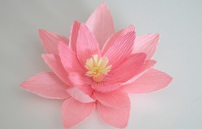 цветы бумажные, цветы из бумаги, из бумаги, лилии, лилии водяные, гофробумага, цветы декоративные, цветы для украшения, цветы своими руками, своими руками, мастер-класс, изготовление цветов, поделки из бумаги, на 8 марта,
