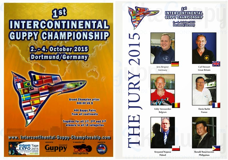 les-juges-du-1er-championnat-InterContinental-de-Guppy
