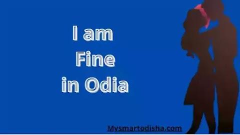 I am Fine in Oriya Language, Oriya translation I am Fine