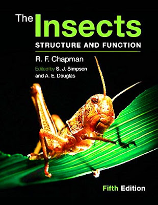 The Insects Structure and Function