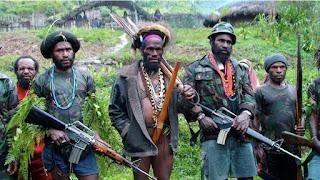 Kelompok Separatis Teroris Dalang Berbagai Pembunuhan di Papua