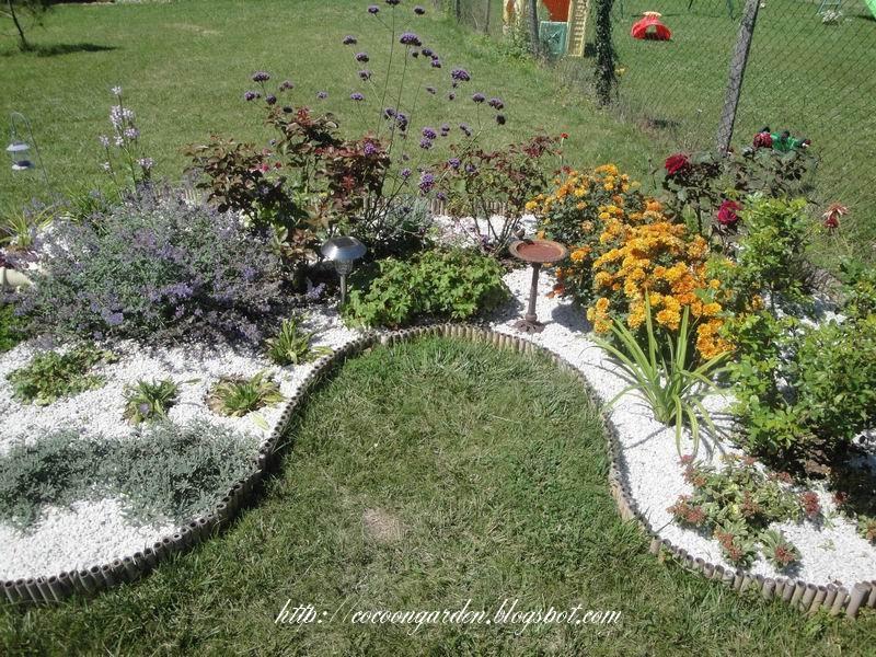 cocoon garden massif de rosiers remani. Black Bedroom Furniture Sets. Home Design Ideas
