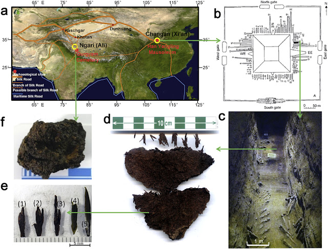 2,150-year-old tea leaves found in Chinese royal tomb