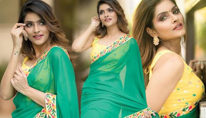 Actress Subalakshmi Rangan Pics In Green Georgette Saree Photos