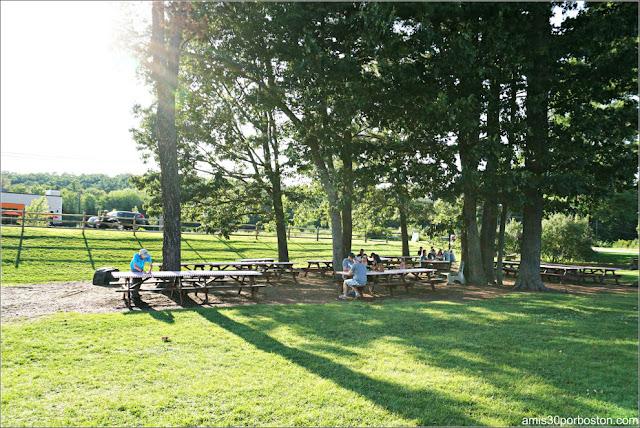 Zona Mesas de Picnic de Kimball Farm, Lancaster