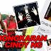Inilah Profil Lengkap Cindy Ng : Pembunuh Memandu Lawan Arus Bunuh Satu Nyawa