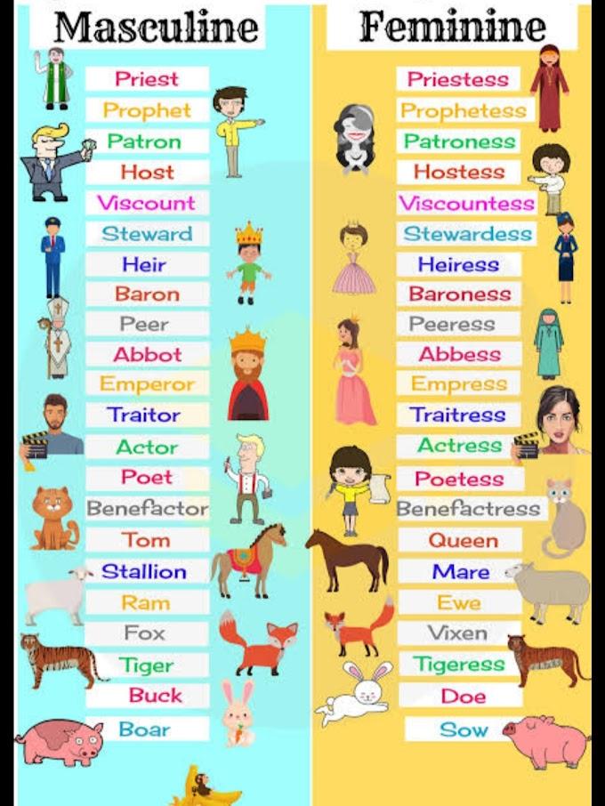 100% feminine ways to learn English..