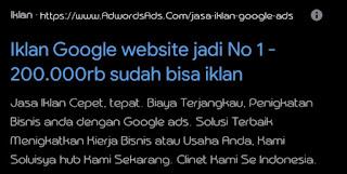 fungsi-google-ads-contohnya