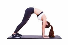 Động tác The Towel Plank and Knee-In