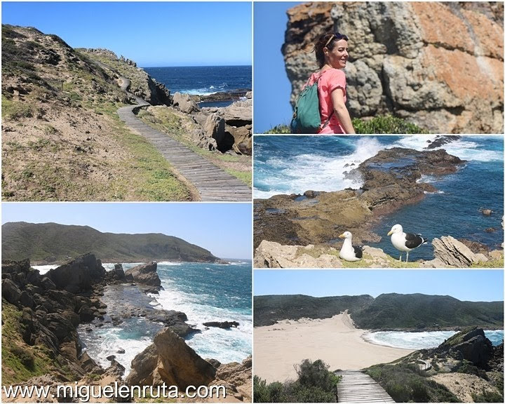 The-Island-Robberg-Nature-Reserve