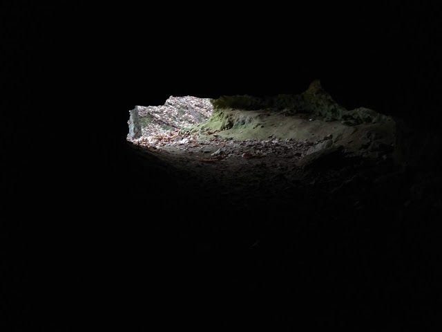 płóczki dolne jaskinie