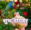 Good afternoon in Hindi Images for Social media