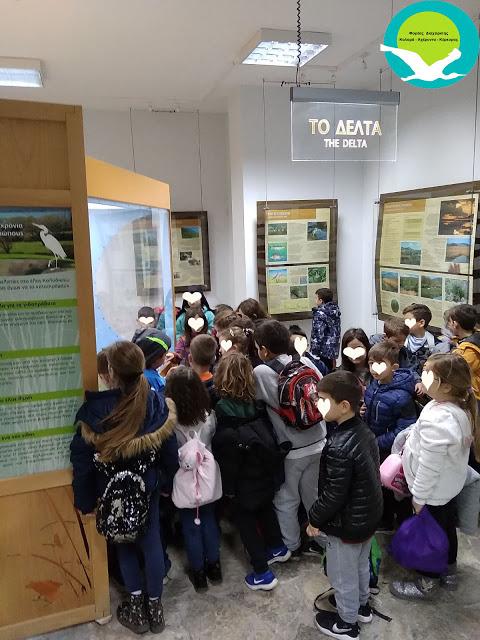 Θεσπρωτία: Επίσκεψη του Δημοτικού σχολείου Γραικοχωρίου στο κέντρο πληροφόρησης Καλαμά στη Σαγιάδα