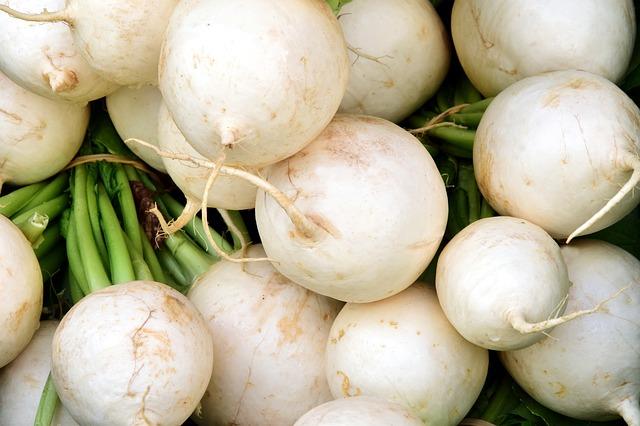 manfaat lobak putih untuk kesehatan jika dikonsumsi secara rutin